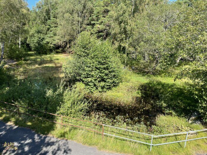 Park- och naturförvaltning kommer att utreda ett Göteborgsförslag om upprustning i och kring Klockedammen mellan Torslanda Torg och Torslandaskolan.
